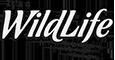 It's-a-Wildlife-Logo-grunge-stamp
